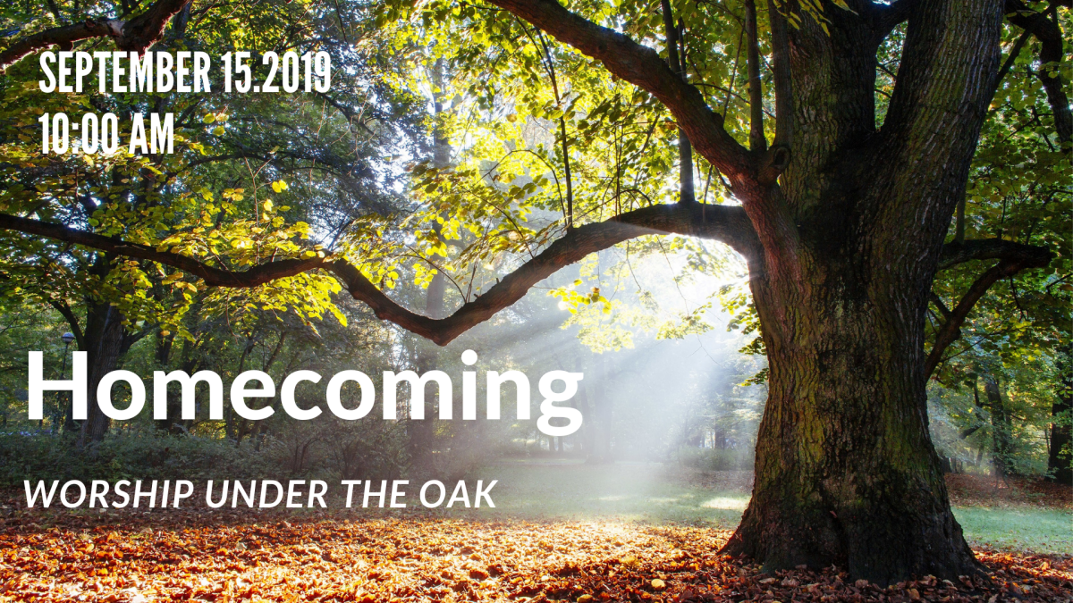 Homecoming - Worship Under the Oak