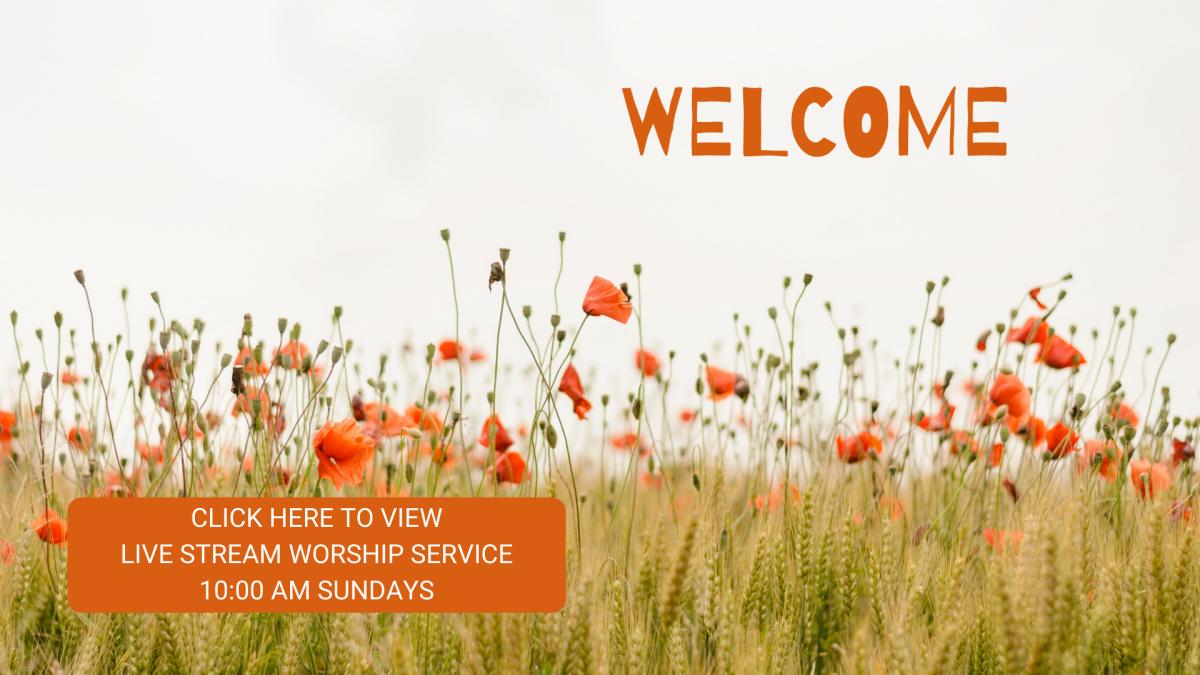Sunday Morning Streaming Worship